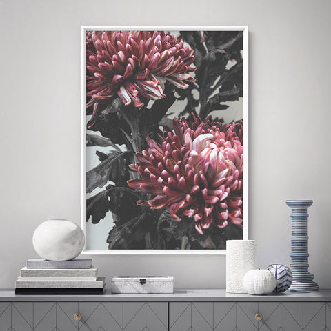 Red Florals / Chrysanthemums in Bloom - Art Print, Stretched Canvas, or Framed Canvas Wall Art