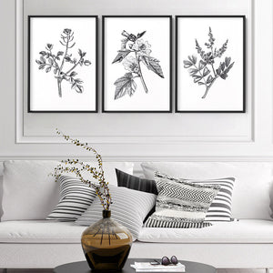 Load image into Gallery viewer, Botanical Floral Illustration II - Art Print, Stretched Canvas or Framed Canvas Wall Art, Shown framed in a room mockup