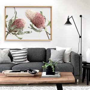 Blushing Banksia Duo Landscape - Art Print, Stretched Canvas or Framed Canvas Wall Art, Shown inside a frame
