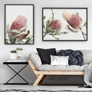 Blushing Banksia Duo Landscape - Art Print, Stretched Canvas or Framed Canvas Wall Art, Shown framed in a room mockup