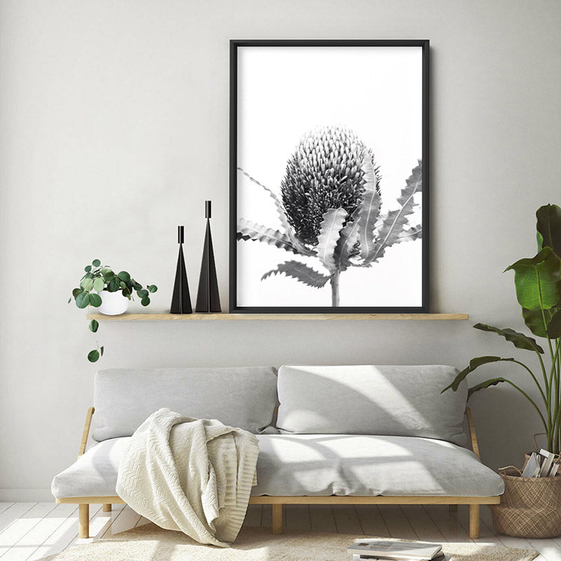 Banksia Flower Black and White - Art Print, Stretched Canvas or Framed Canvas Wall Art, Shown inside a frame