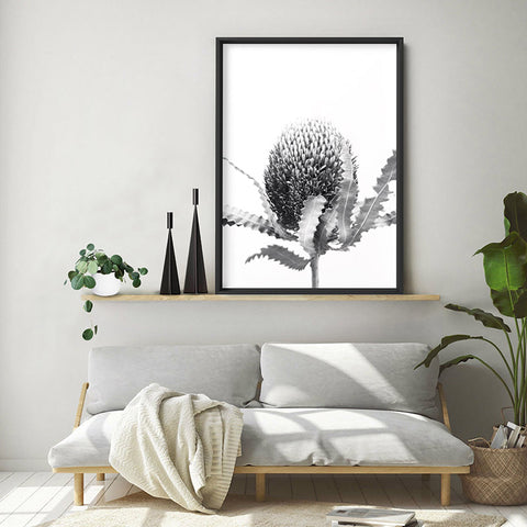 Banksia Flower Black and White - Art Print, Stretched Canvas, or Framed Canvas Wall Art
