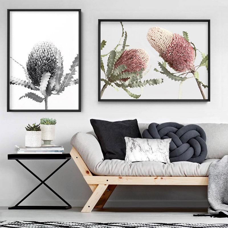 Banksia Flower Black and White - Art Print, Stretched Canvas or Framed Canvas Wall Art, Shown framed in a room mockup