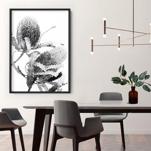 Banksia Flower Duo Black and White - Art Print, Stretched Canvas or Framed Canvas Wall Art, Shown inside a frame