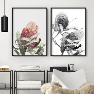Banksia Flower Duo Black and White - Art Print, Stretched Canvas or Framed Canvas Wall Art, Shown framed in a room mockup