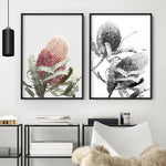 Blushing Banksia Flower - Art Print, Stretched Canvas, or Framed Canvas Wall Art