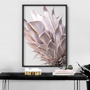 King Protea Close up in Blush - Art Print, Stretched Canvas, or Framed Canvas Wall Art