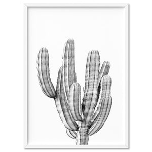 Monochrome Cacti - Art Print, Stretched Canvas, or Framed Canvas Wall Art