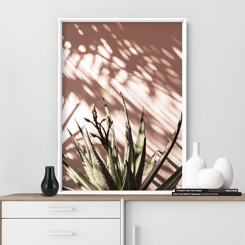 Aloe Succulent in Afternoon Light - Art Print, Stretched Canvas or Framed Canvas Wall Art, Shown inside a frame