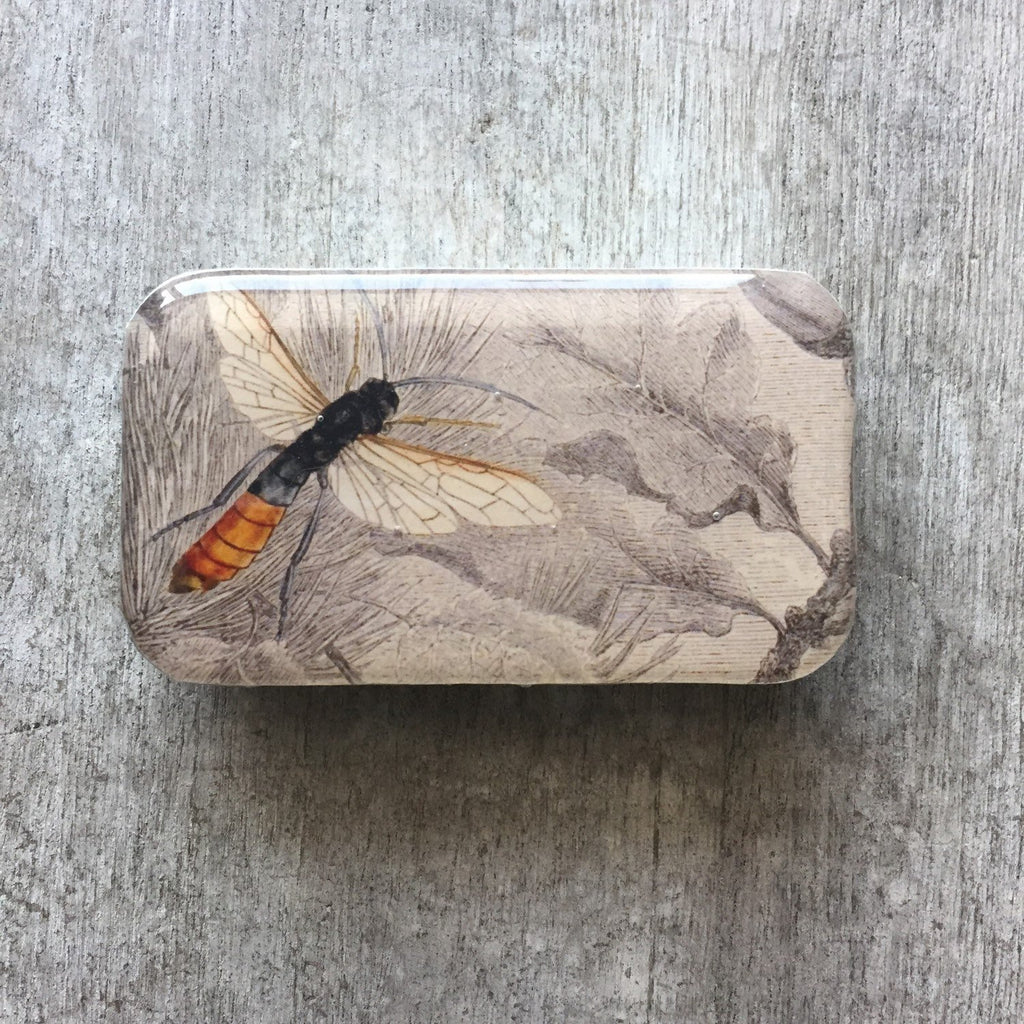 Firefly Notes - Bee Notions Tin - The Bee Collective