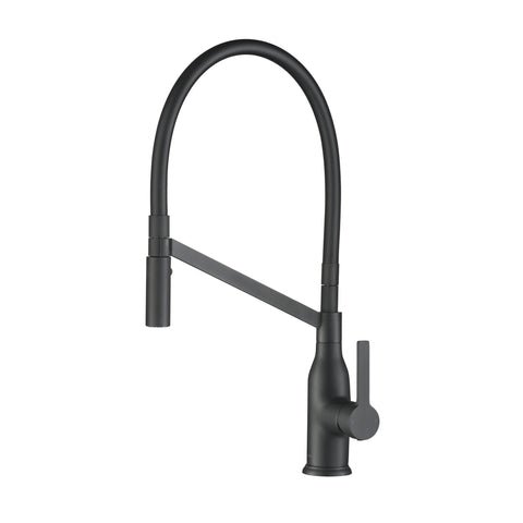 Stufurhome Vallant Kitchen Faucet w/ Spray Head Gooseneck Single Lever Mixer in Matte Black