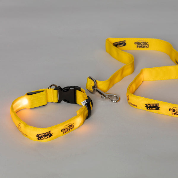 Light-Up Dog Collar and Lead Set