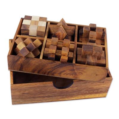 Handcrafted Set of Six Wooden Puzzles - Quick Ship - Puzzlicious.com