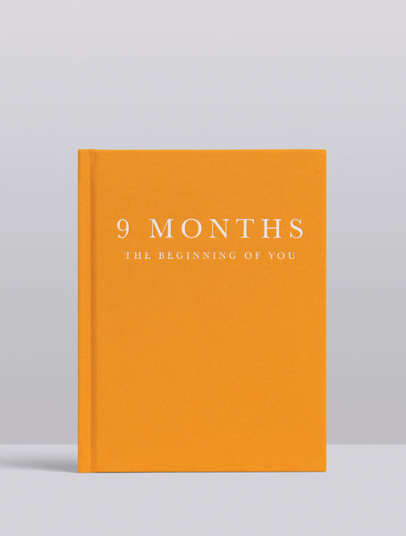 Write To Me Pregnancy Journal 9 Months The Beginning Of You