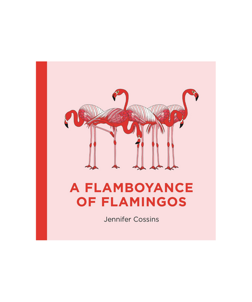 A Flamboyance Of Flamingos Book by Jennifer Cossins