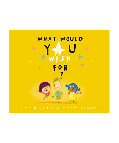 What Would You Wish For Book by David Sable
