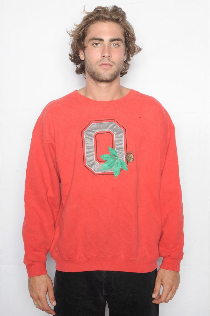 Red Ohio State University Sweatshirt