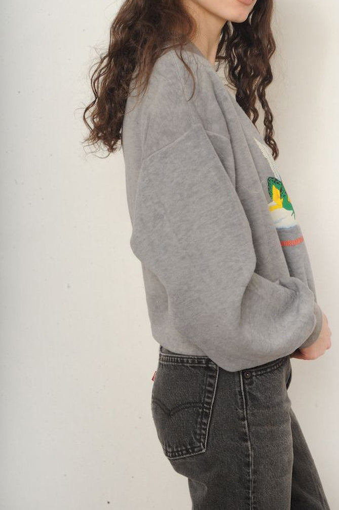 Gray Holy Frogs Sweatshirt
