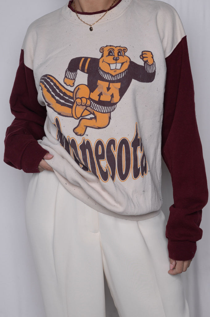 University of Minnesota Colorblock Sweatshirt