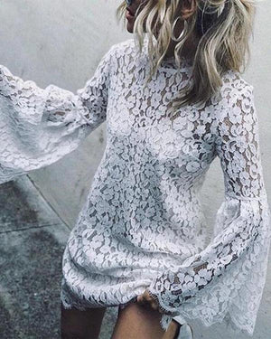 Solid Long Sleeve Lace Casual Crew Neck Daily Shift Tops