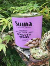 Load image into Gallery viewer, Organic Borlotti Beans 400g
