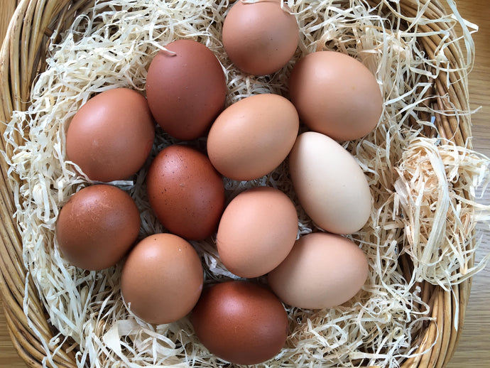 Wackley Brook Organic Free Range Eggs  Mixed Weight Box of 6
