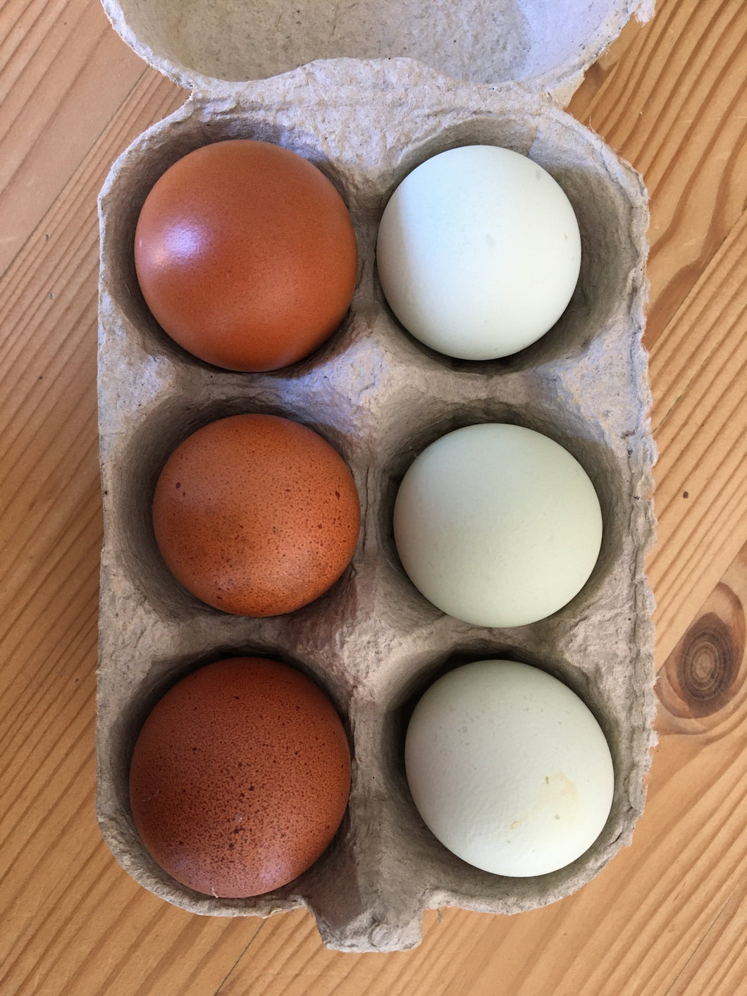 Wackley Brook Organic Free Range Mini Speciality Eggs - Mixed Weight Box of 6 *Reduced Price*