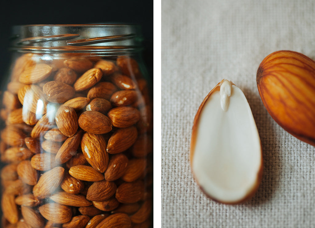 Almonds - Organic, Raw, Sprouted