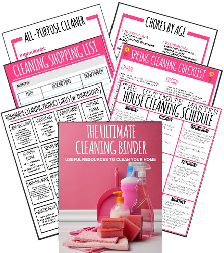 **New** Ultimate Cleaning Binder