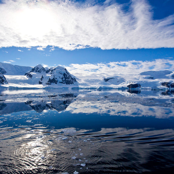 Peace in Antarctica, Melchior Island, Antarctica, by Robert Ross