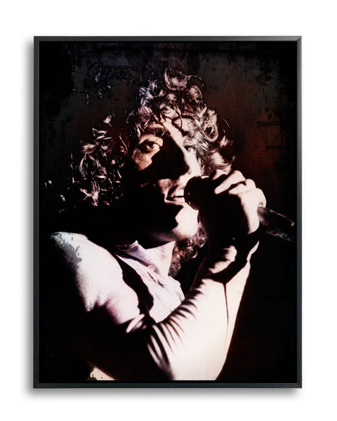 Roger Daltrey, the Who by Daniel Goldberg, Limited Edition Print