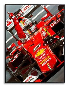 Sebastian Vettel, Victory for Jules by Colin Carter