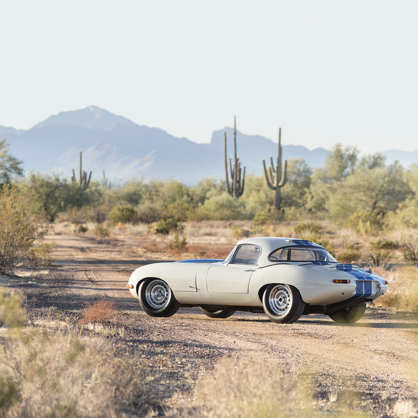Jaguar E-Type 1963, Side View by Pawel Litwinski