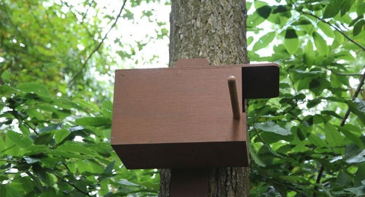 Kestrel Nest Box (Camera Ready)