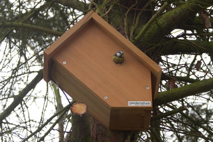 Side View Bird Box (Camera Ready)