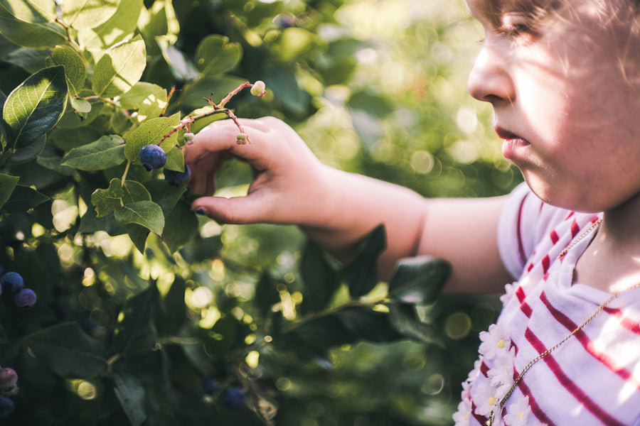 How to teach your kids to be more eco-conscious