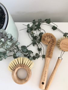 Eco Dish brush set