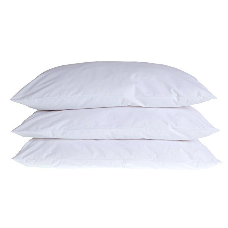 Buy 100% Wool Pillow From The Wool Company Online