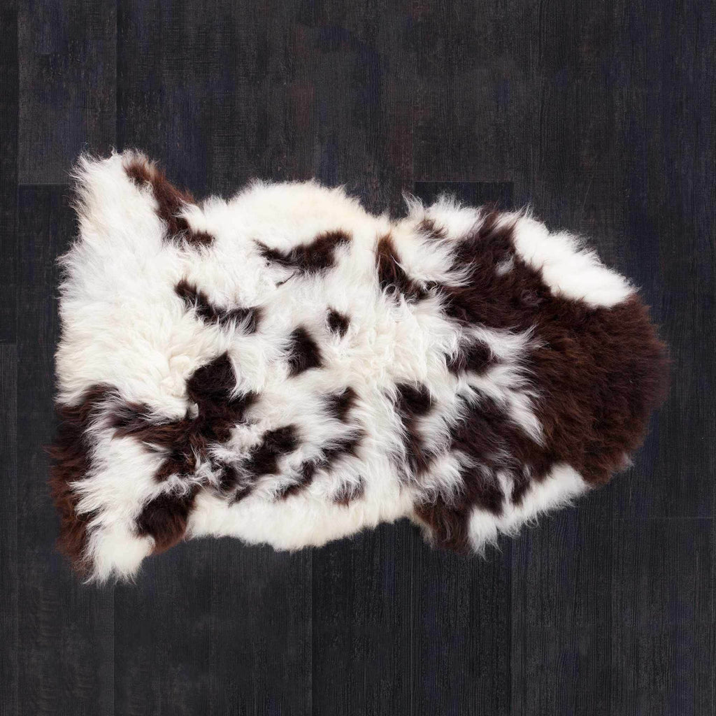 Buy Large British Rare Breed Jacob Sheepskin Rugs From The Wool Company Online