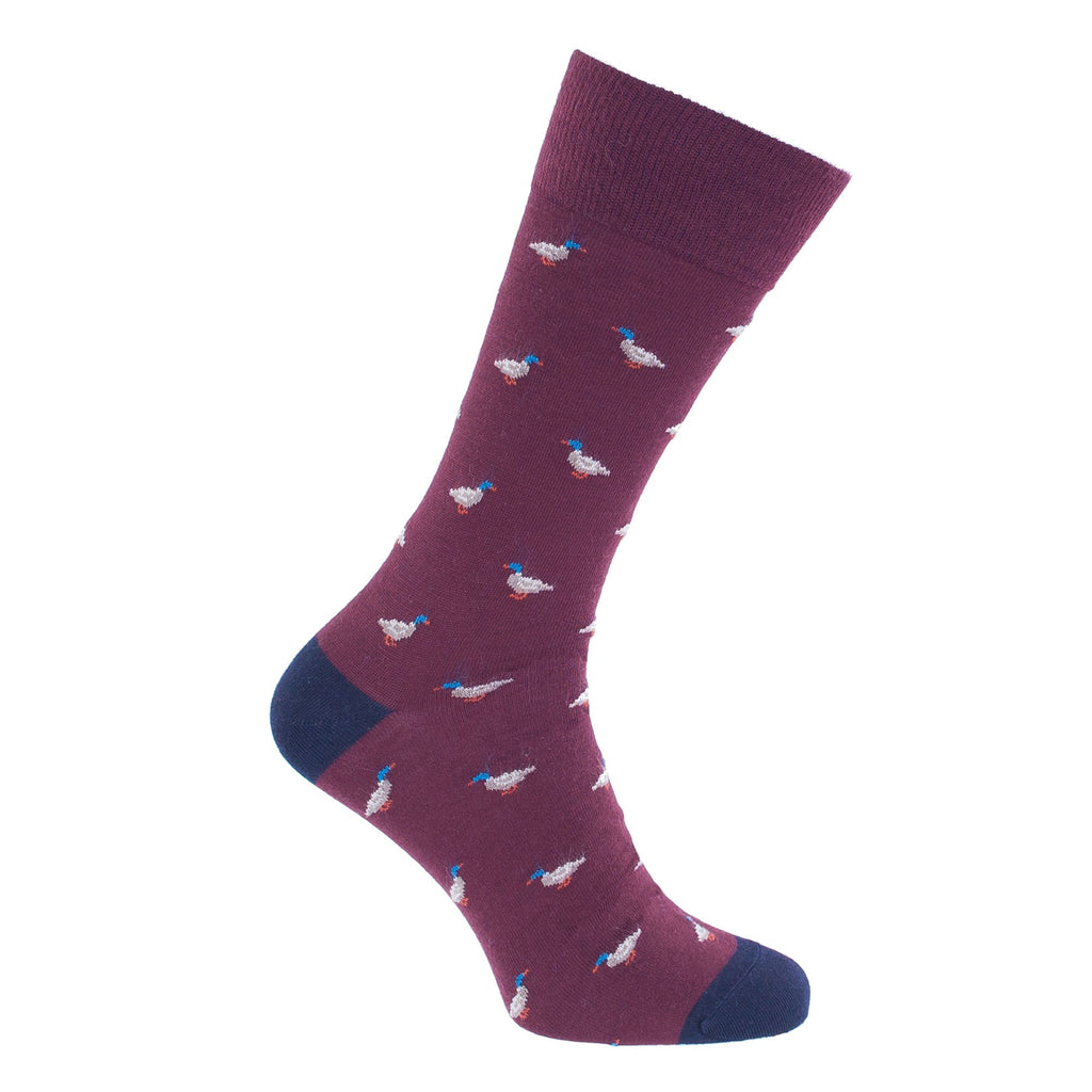 Buy Duck Motif Merino Wool Blend Socks From The Wool Company Online