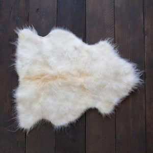 Buy Economy Pet Sheepskin Rugs From The Wool Company Online