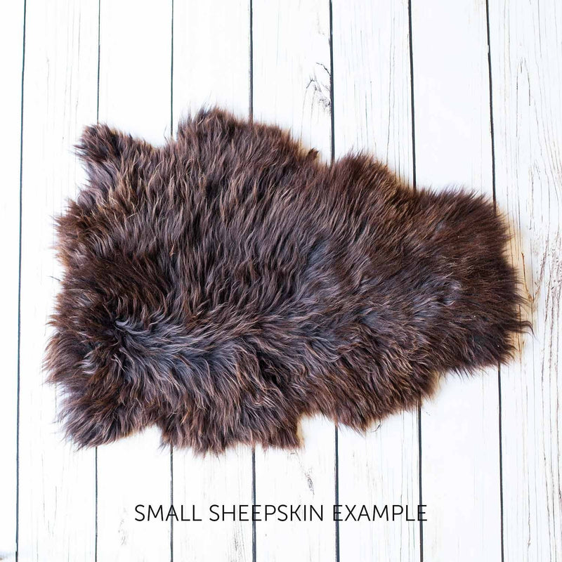 Natural Chocolate Economy Sheepskin Rugs SHEEPSKIN The Wool Company