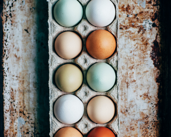 Pasture-Raised Eggs Subscription