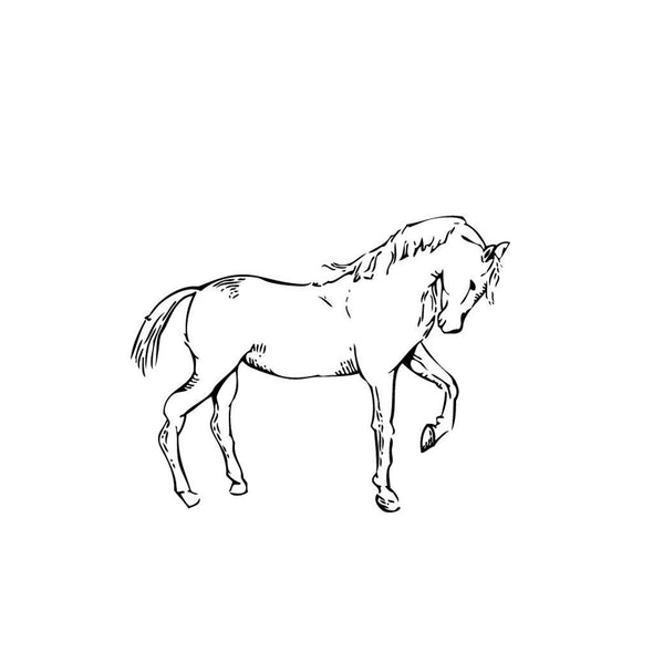 Porcelain Horse Stamp Equestrian Stationary