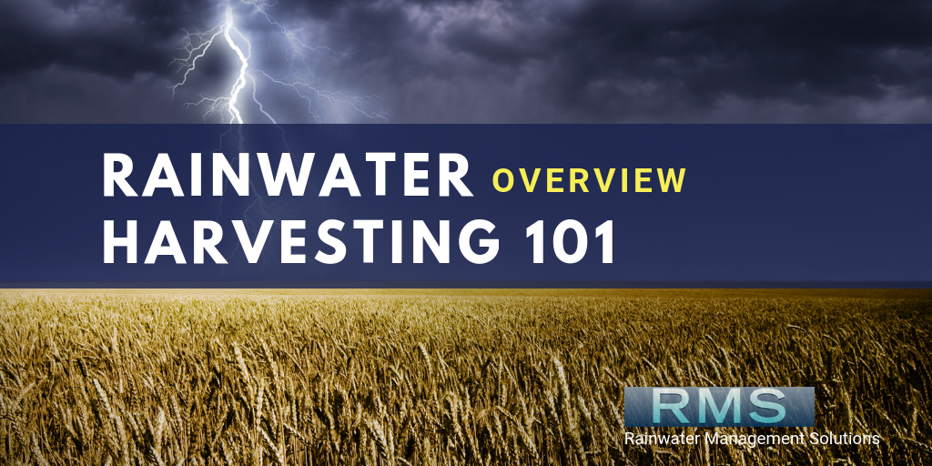 Rainwater Harvesting 101: Overview