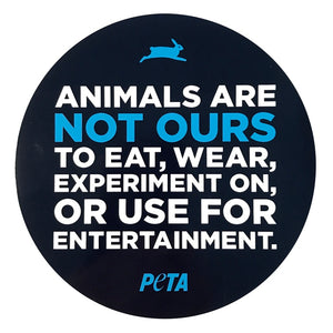 🌱What PETA is saying About Vegan Leather & Why It Should be in your wardrobe & your pets 🌱