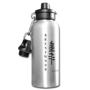 Brentwood Water Bottle - silver