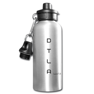 DTLA Water Bottle - silver