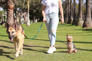 The Brentwood Crossbody Dog Leash