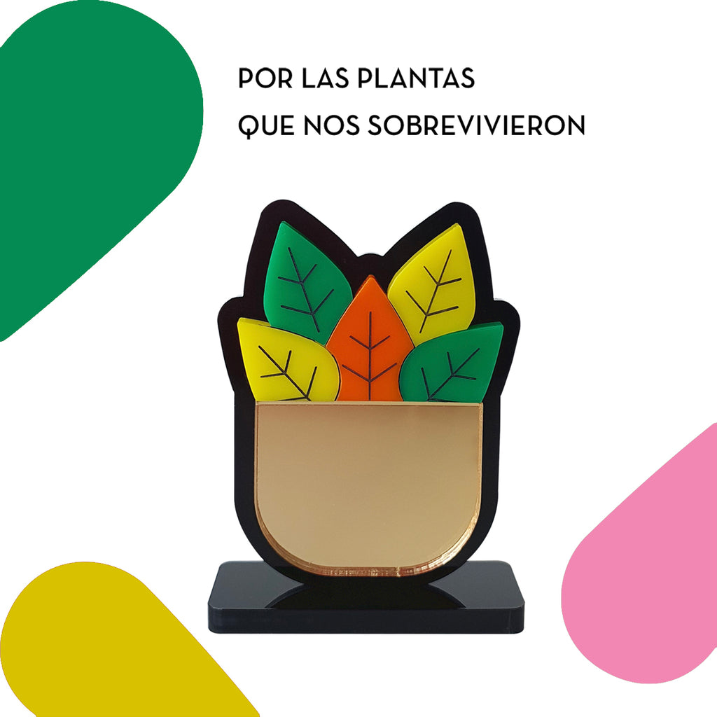 Lovely Reminder: Plantas